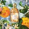 Guerlain Aqua Allegoria Orange Soleia Eau De Toilette 75ml