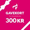 Gavekort – 300,-