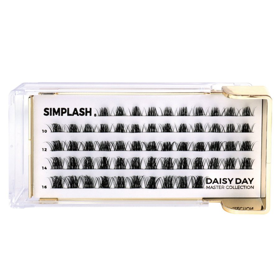 Simplash Daisy Day Master Collection